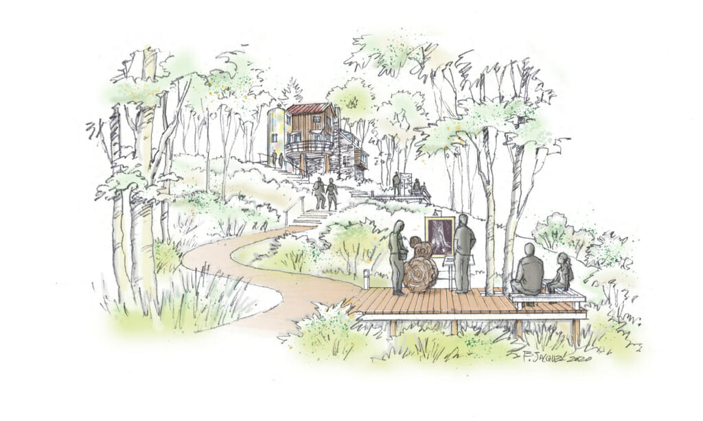 drawing of path through woods leading up to the studio