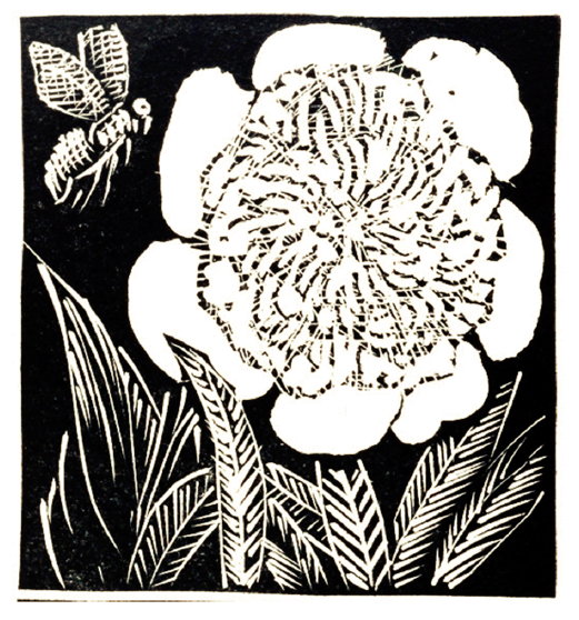 Woodcut print of a peony flower and a bee